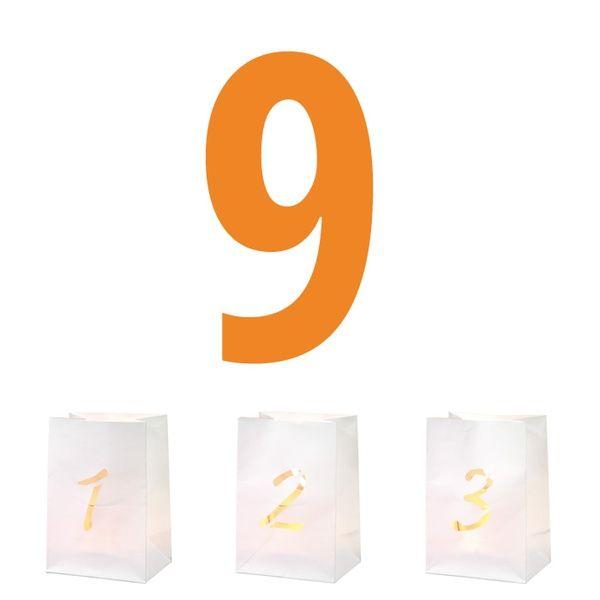 Zahlen Lichttüte 9