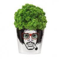 "Blumentopf ""Herbal Jimmy"" small"