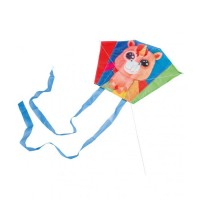 "Mini Kite ""Rainbow Lily"""