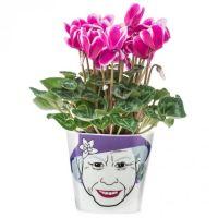 """Blumentopf """"Flower Queen"""" small"""