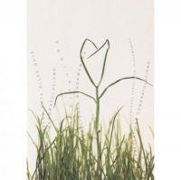 """Herzblüten Karte """"Gras mit Blüte"""""""