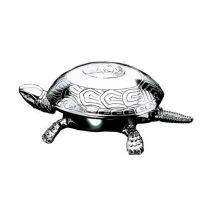 Schildkröte/Tischglocke - Edelchrom