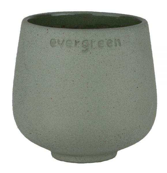 Blumenfreund - Evergreen