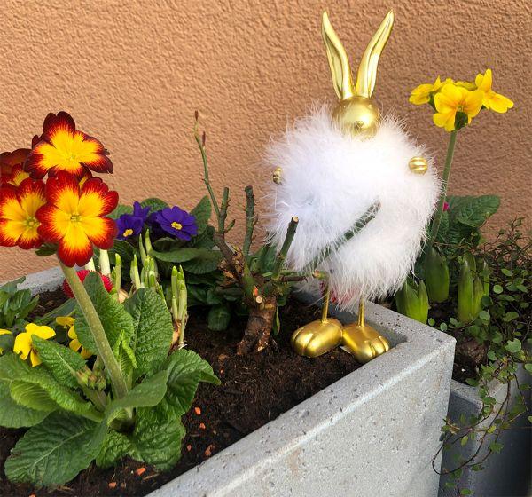 Goldener Hase mit Federn